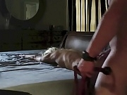 Amateur blonde slut getting fucked and whipped.